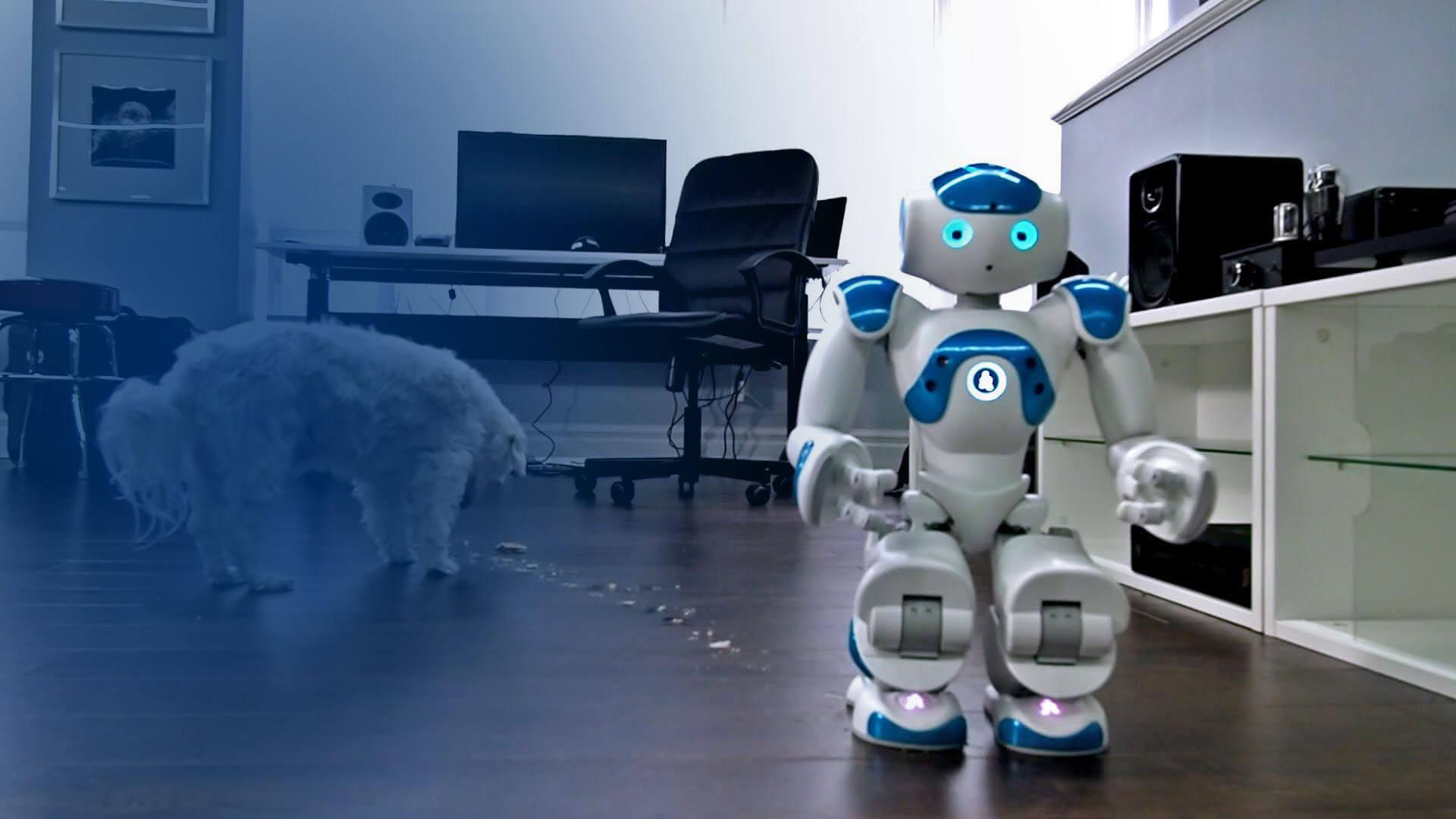 Forex ea robot dynamic trader v1 1